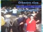 denizlideki orkestralar çalgıcılar piyanistler denizlideki düğün kınagecesi orkestrası arayanlar