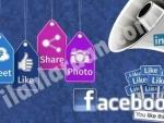 Web tasarım ve facebook reklam yönetimi