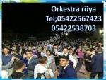 orkestra rüya denizlideki orkestralar tavasta çalgıcılar nazillide düğün orkestrası arayanlar